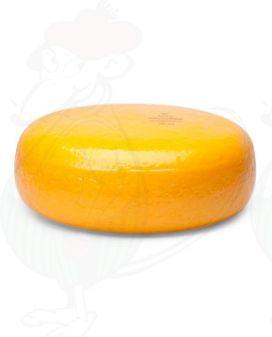 Fromage Gouda jeune | Fromage Gouda de qualité supérieure | Fromage entier 4,5 kilo