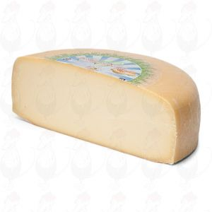 Jung gereifter Bio Käse   Premium Qualität