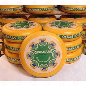 Fromage herbeux- Graskaas - Gouda | Fromage Gouda de qualité supérieure | Fromage entier 12 kilo