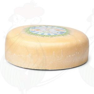 Fromage jeune affiné biologique | Fromage Gouda de qualité supérieure | Fromage entier 7,5 kilo / 16.5 lbs