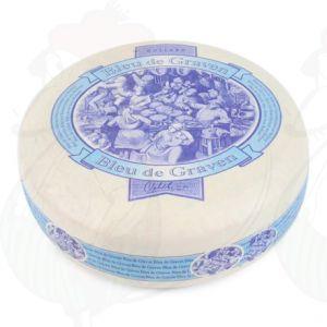 Bleu de Graven - Fromage végétarien hollandais | Fromage Gouda de qualité supérieure | Fromage entier 3,5 Kilo