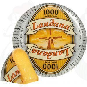 Landana 1000 Days